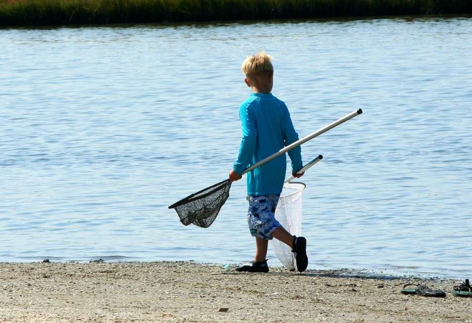 a child with a fishing net